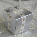 #EE01HS - Silver Favor Box