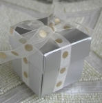 #EE01-HSCC - Silver Favor Box