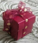#EE01HB - Burgundy Favor Box