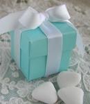 #EE01R - Robin's Egg Blue